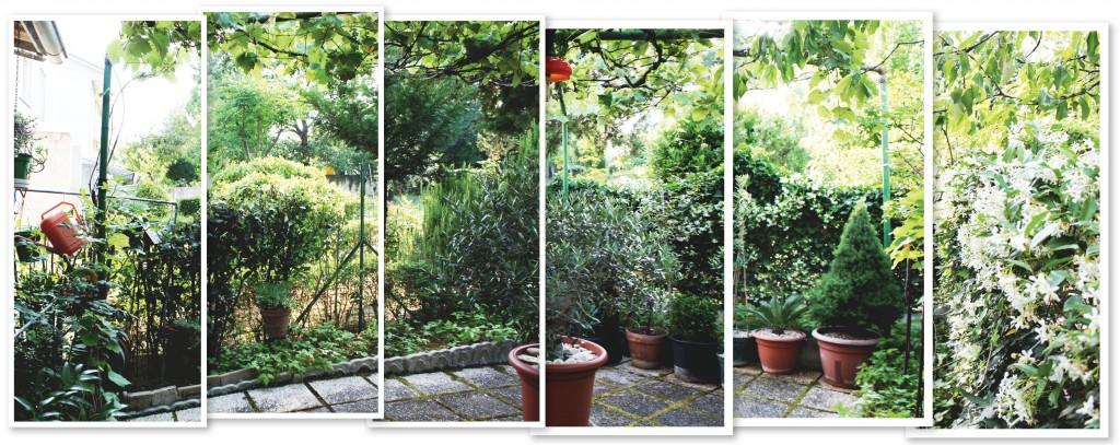 Darios small Italian garden