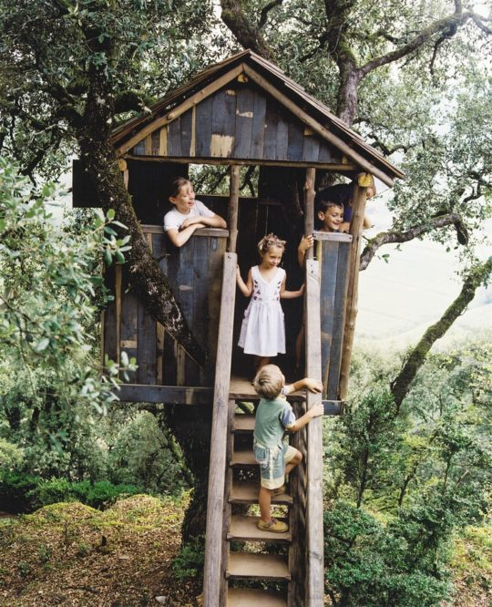 Kids Tree House rustic kids tree house inspiration | house mix