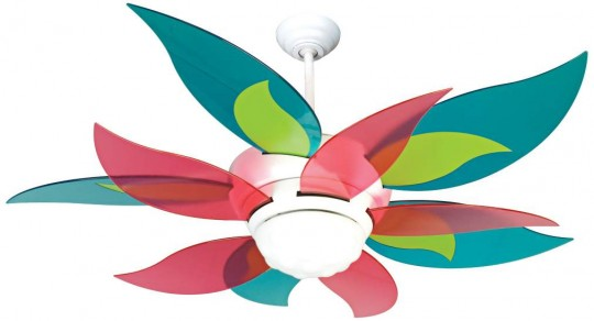 colorful leaf fan