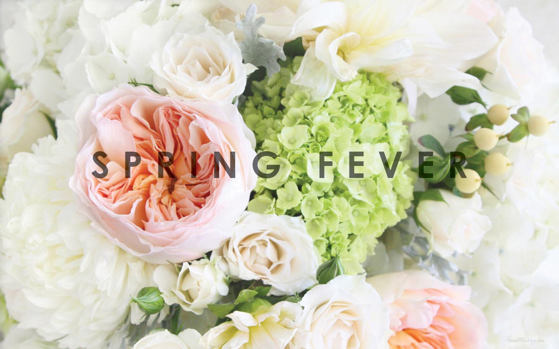 Desktop Wallpaper Spring Fever House Mix