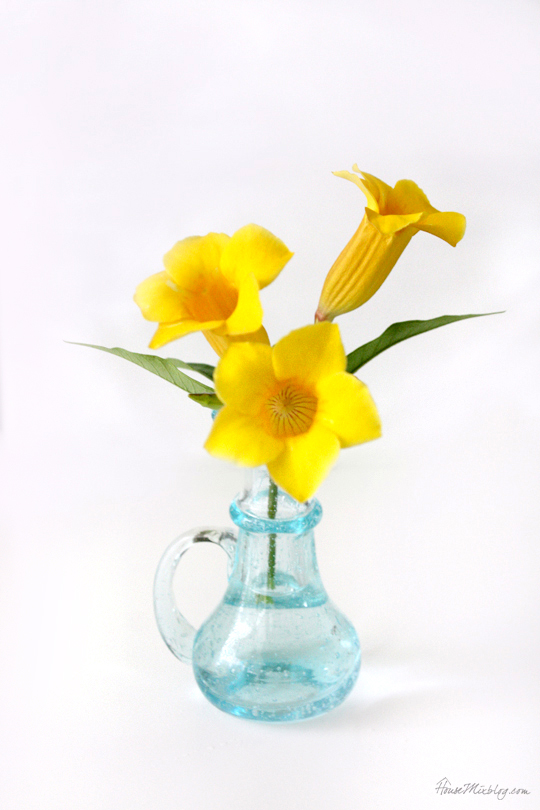 Non-touristy souvenir ideas - small vase