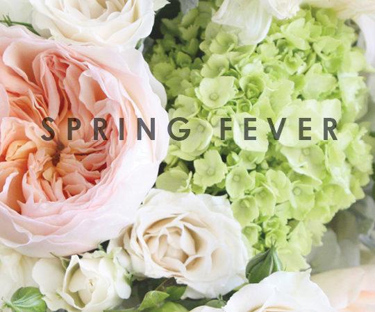 Spring fever pastel flowers