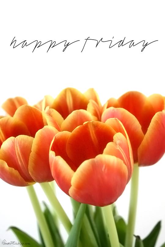 weekly pregnancy photo ideas - happy friday tulips