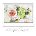 spring fever desktop wallpaper download