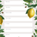 Pretty floral printable daily cleaning schedule - blank