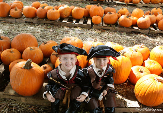 Pirate brothers in a pumpkin patch