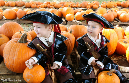 Pirate pumpkin patch