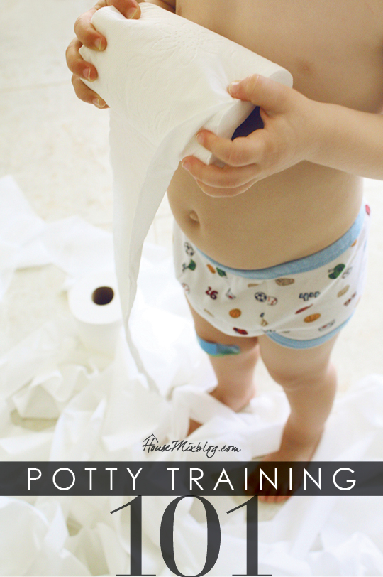 Potty training with step by step instructions, checklists, real journal and Netflix and Amazon instant kid shows