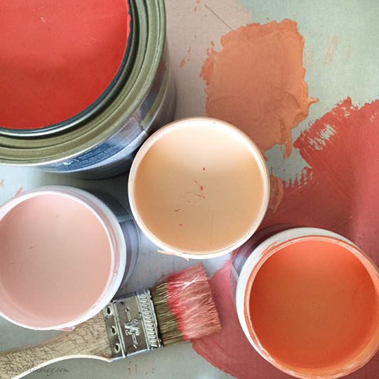 Coral and pink paint colors