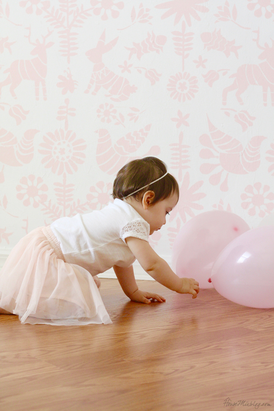 First birthday girl photo ideas