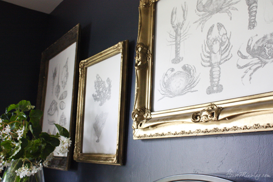 DIY nautical art - shells, lobster, crab, coral