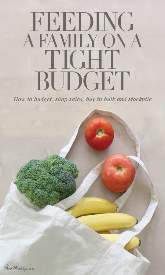 Grocery shopping and feeding a family on a tight budget - How to budget, shop sales, plan a menu and stockpile