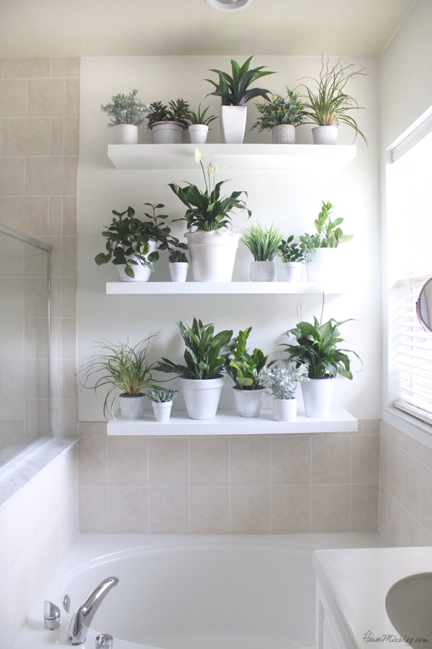 i have been eyeing beautiful plant walls on pinterest plotting and planning for this blank wall in our master bathroom it has artificial and real plants - Bathroom Plants