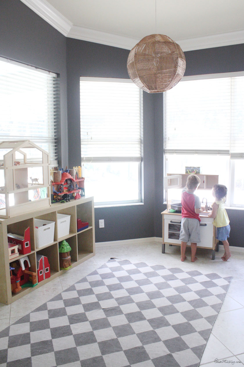 Playroom and toy organization