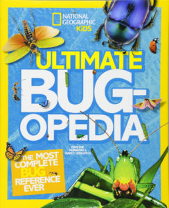Bug book for boys