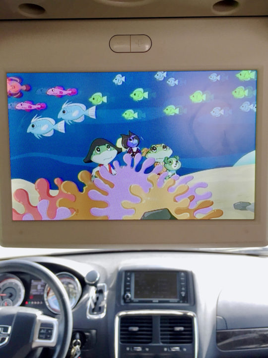 Take advantage of you captive audience and watch educational shows in car