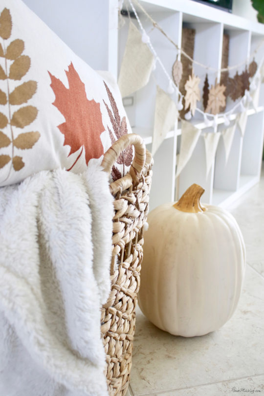 Fall pillows from $5 placemats