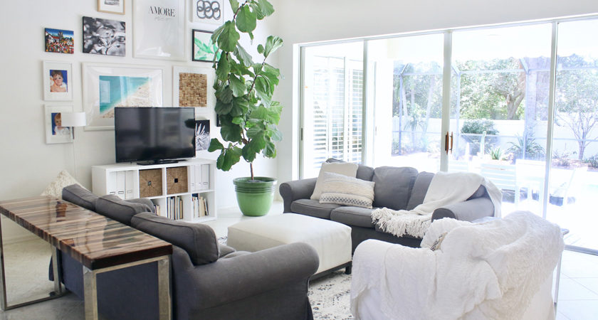 Gray and white living room with gallery wall and oversized fiddle leaf fig tree