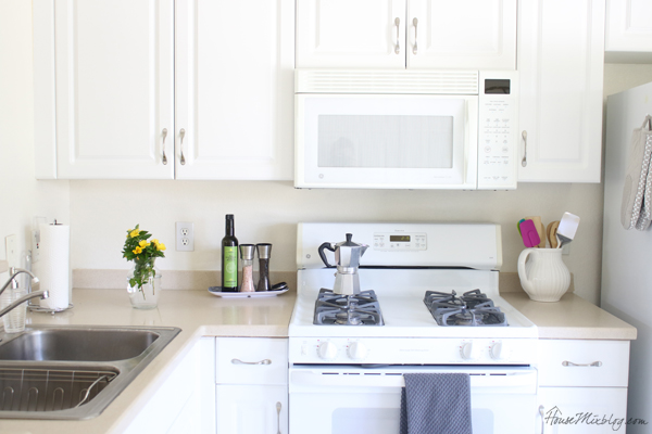 Small white kitchen on a budget
