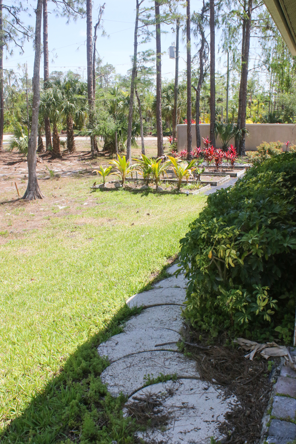 garden beds in florida