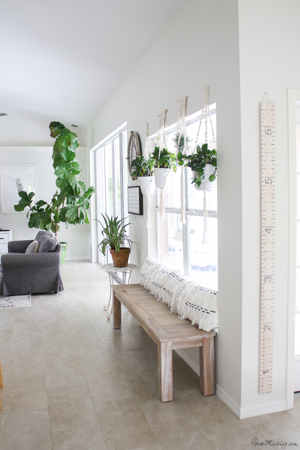 Blank wall transformed with bench and plants