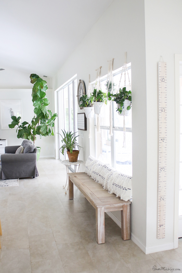 Blank Wall Update With Bench And Plants