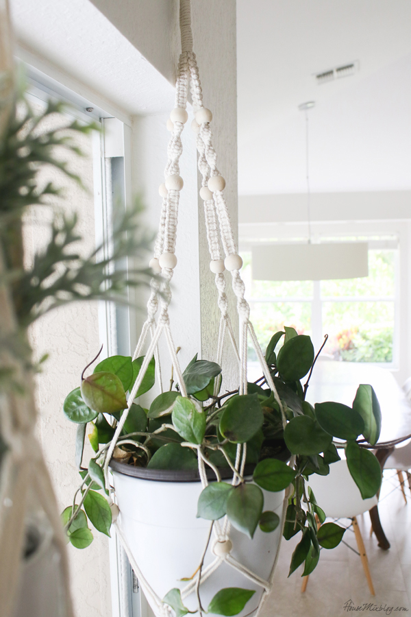 Hanging plants make a big impact in a blank space