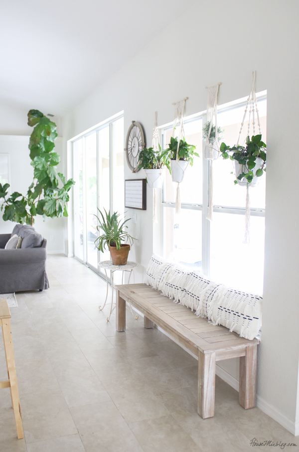 Rustic bench with white walls and hanging plants