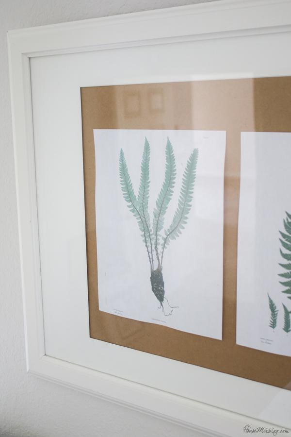 free printable fern art illustration prints