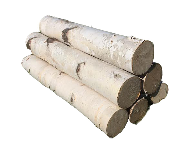 birch log set