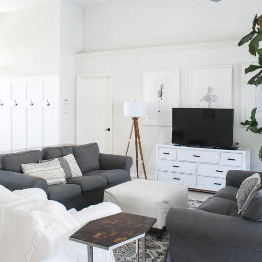 living room - white and gray
