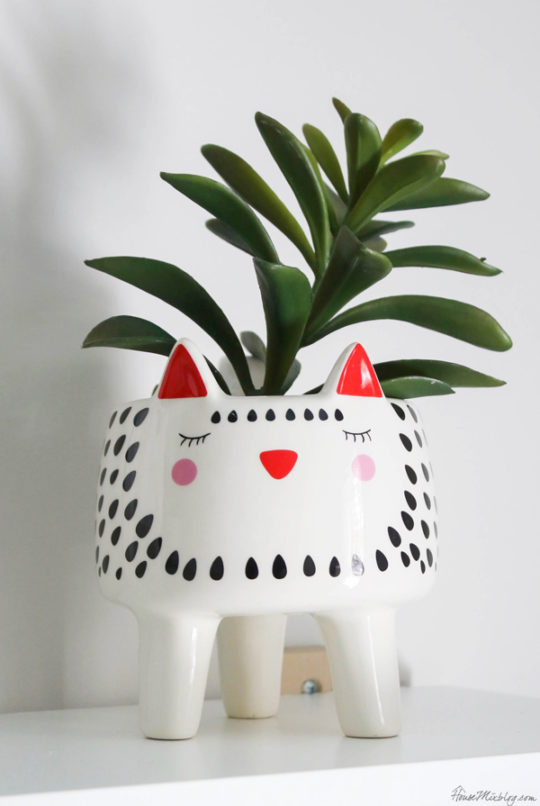 Cat pot with succulent