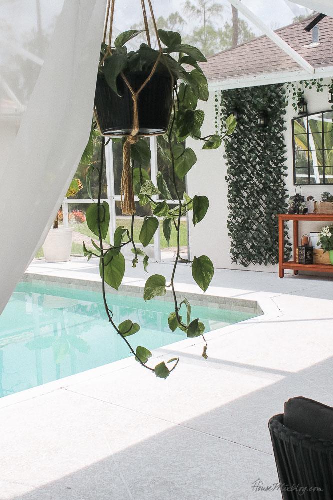 Patio, pool and lanai decor ideas on a budget-hanging plants on lanai
