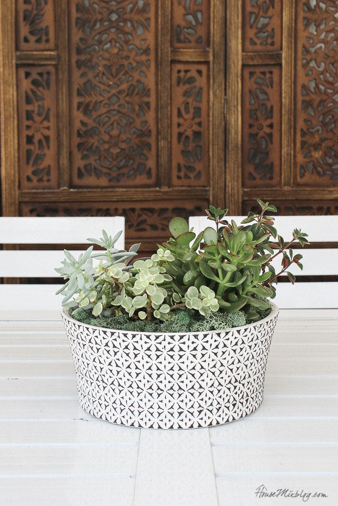 Patio, pool and lanai decor ideas on a budget-potted succulents outdoor centerpiece