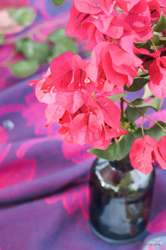 Table setting outside - Outdoor dining in hot pink and purple-bougainvillea clippings and small blue vases