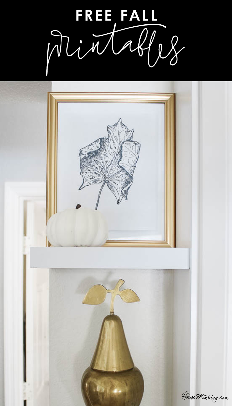 Cheap fall decor ideas - fall leaf printable - Thanksgiving scripture grateful thankful printable - fall kitchen styling - give thanks - leaf line drawing