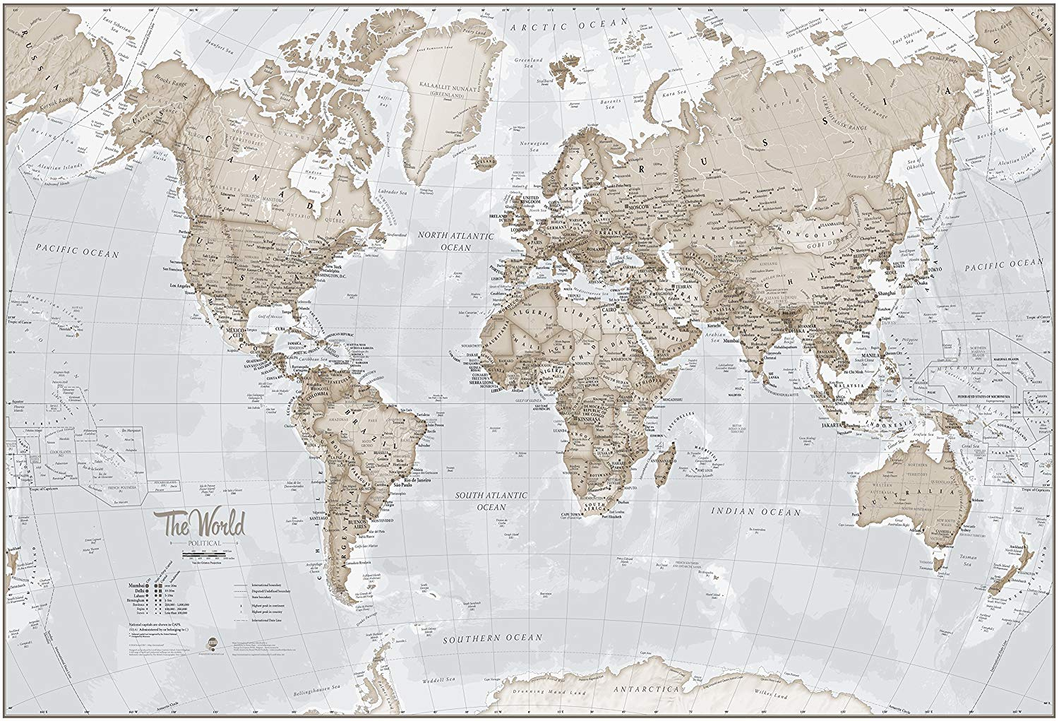 Large neutral world map mural