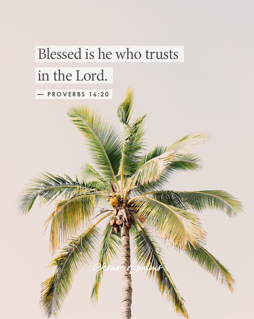 Blessed are those who trust in the Lord