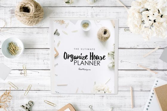 NEW! The Ultimate Organize House Planner