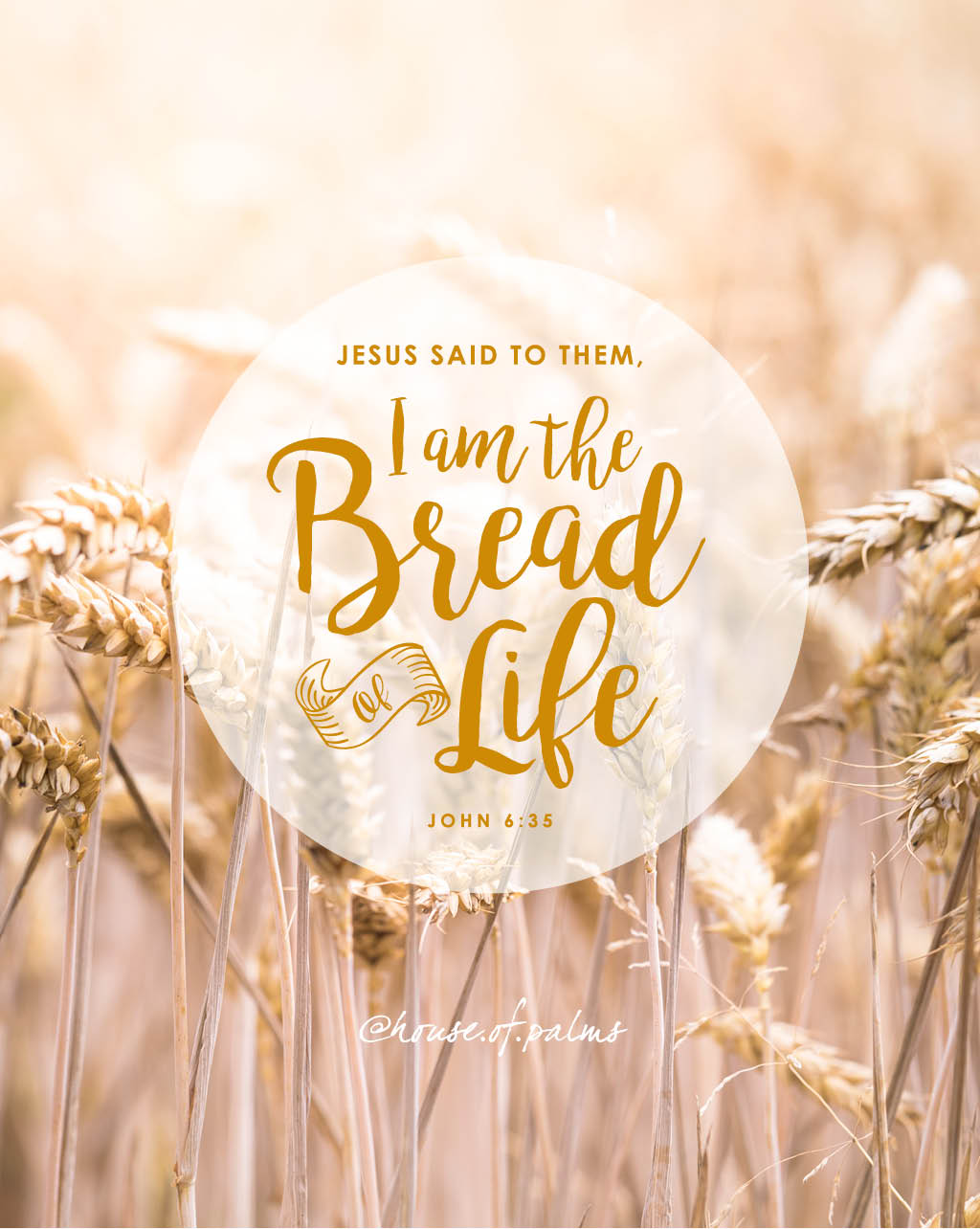 Jesus said to them, I am the bread of life