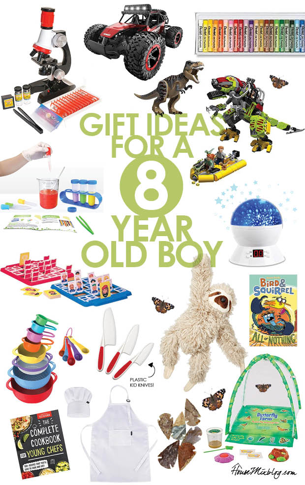 Gift Ideas For A 8 Year Old Boy House Mix