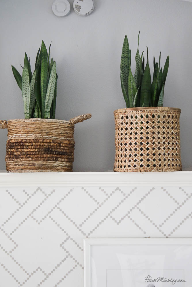 Ledge ideas - snake plants in baskets - living room layout - French gray paint