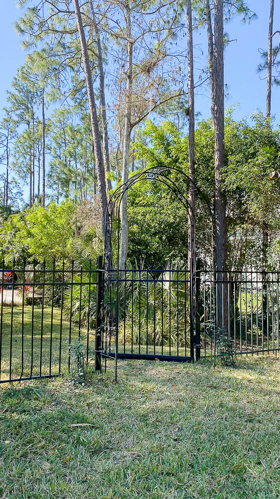 Arbor garden trellis and painting metal fence
