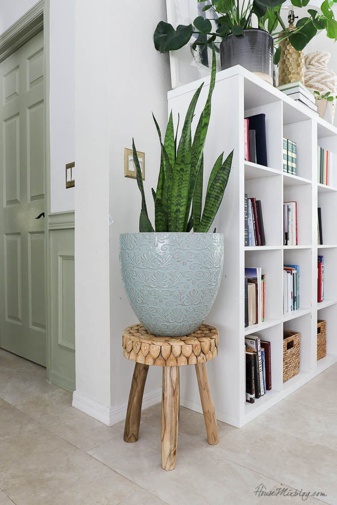 Home decor styling with snake plants and wood stand, bookshelf styling